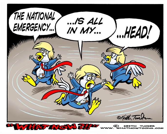 chicken little trump, national emergency, fake national emergency, trump 2019, border wall, constitutional crisis, trump power grab, trump immigration, delusional trump, political cartoons, 2019 trump cartoons